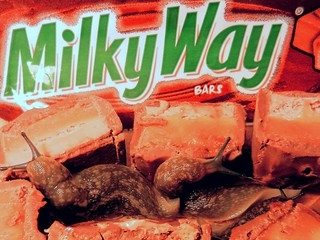 Giant slugs from outer space  aim to devour Milky Way