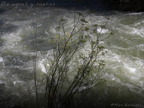 Corriente de agua en Ezaro, A Coruña, Costa da Morte, Río Xallas