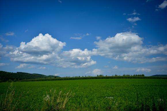 20120814-DSC_4662-summersky