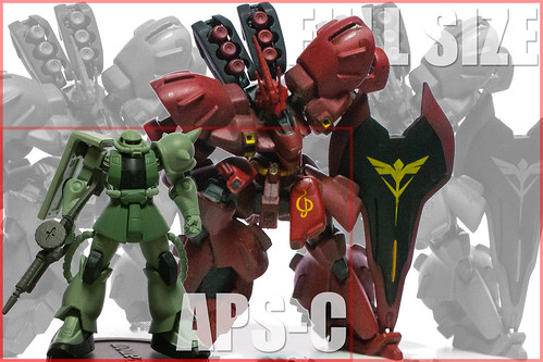 FullSize vs APS-C 比較