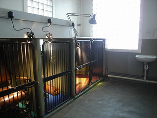 Cages for art
