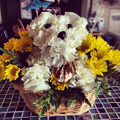 OH MY PUPPY-LOVING GLOB! The bday flowers @2bestill sent me are the cutest in the whole wide world!