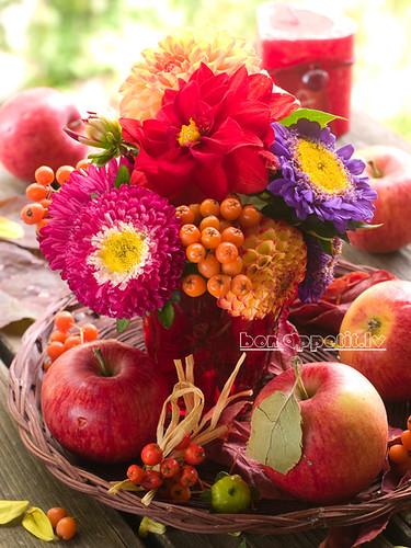 Autumn's color by Viktorija_k