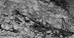Hat Island Landslide Pano