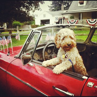 People's (best friend) Parade, Kinderhook, NY