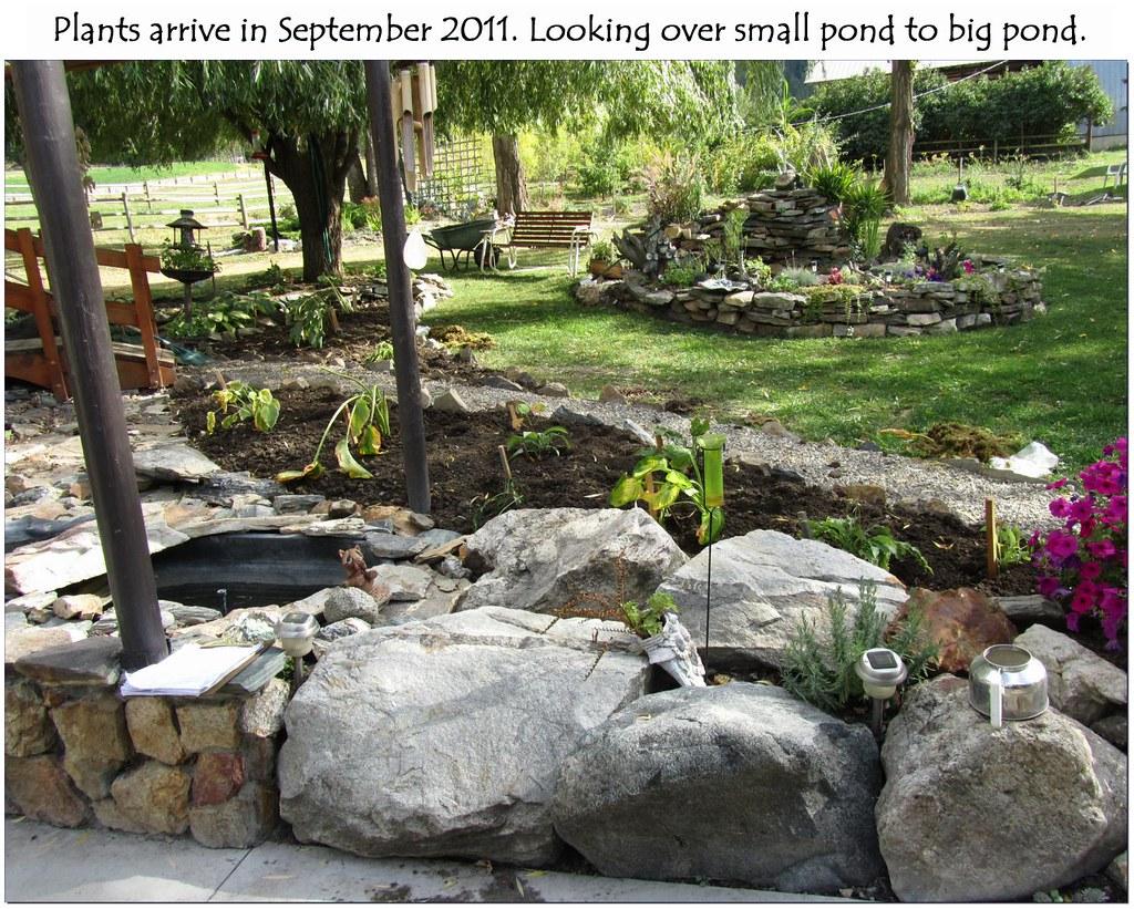 Big Pond (1)