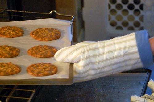 new oven mitt
