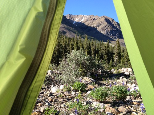 View from tent, Henry Creek