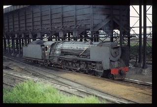 029. 1980-12.  Coal being loaded into a 15F tender from the bunker of Germiston Locomotive Depot - South African Railways.