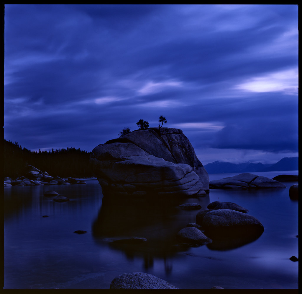 Bonsai rock twilight