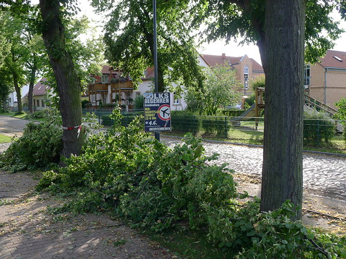 Sturmschäden in der Dorfstraße