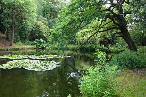 Pond at Chatsworth