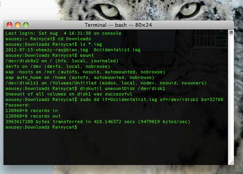 Terminal window putting Occidentalis image on SD card for Raspberry Pi