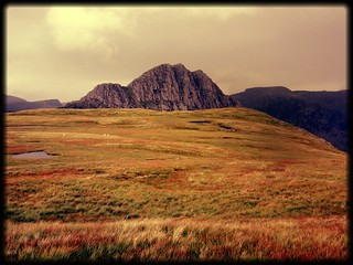 Tryfan across the bog