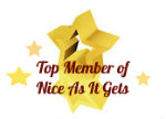 nice as it gets level1-8 top member