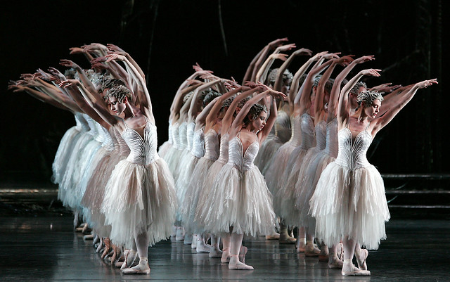 Cast change: Lauren Cuthbertson unable to dance in Swan Lake on 26 ...