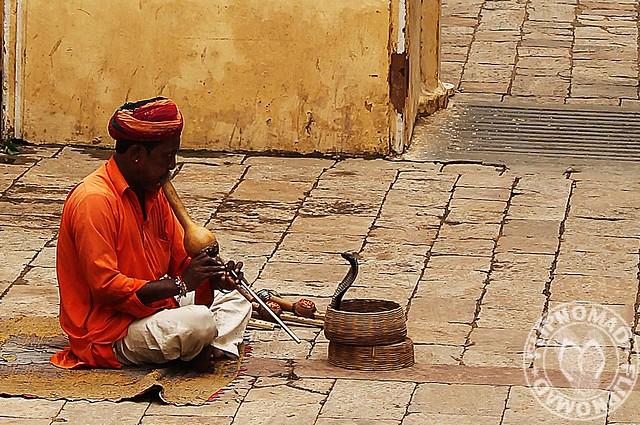 Snake Charmer of Jaipur