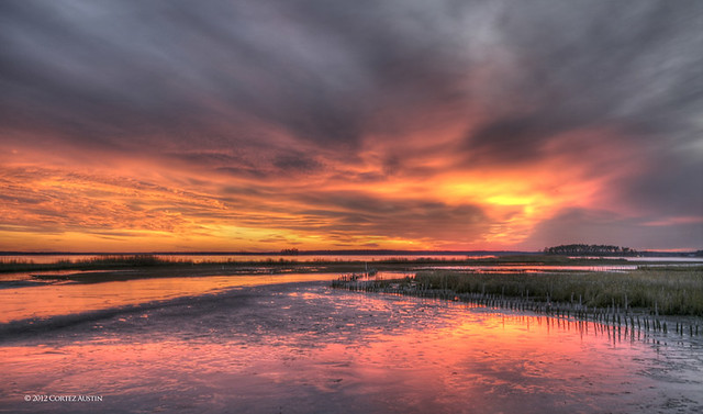 Blackwater_NWR_VU1R4366_7_8_tonemapped