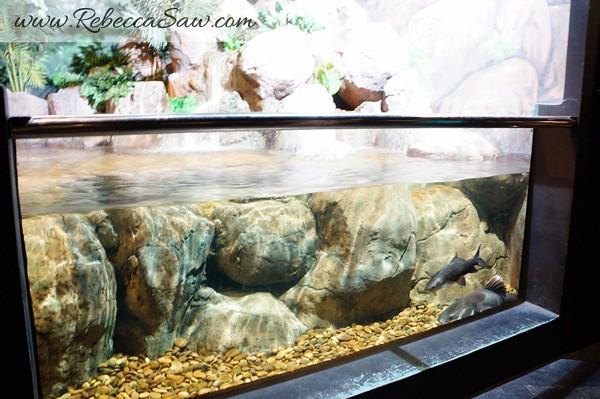 Singora Tram Tour - songkhla aquarium thailand