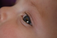 Baby eye [151/366]