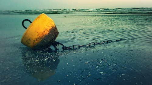 Buoy and chain