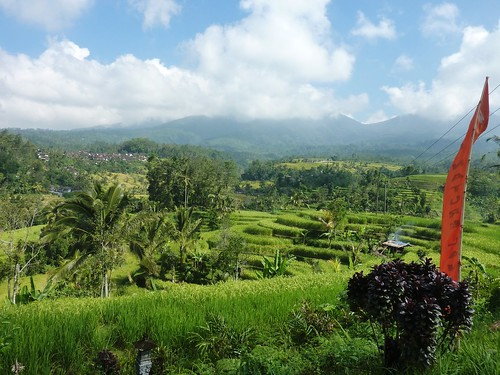 Bali-Route Legian-Jatiluwih (42)