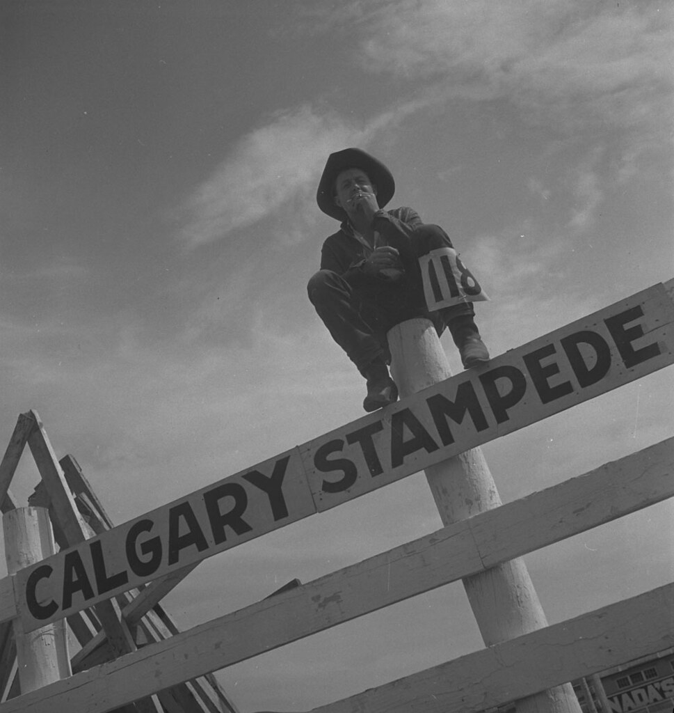 Calgary Stampede Alberta Competitor 118 Sitting On A Fe