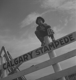 Calgary Stampede, Alberta. Competitor #118 sitting on a fence / Stampede de Calgary, Alberta. Le compétiteur #118 assis sur une clôture