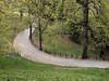 Parco della Burcina [1]