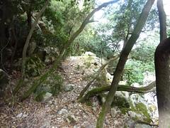 Descente du Carciara : le chemin en RG avant le canyon au retour
