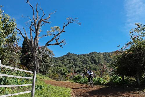 Trilha de Mountain Bike - Andradas - Aguas da Prata - por Pedro Barreto-24