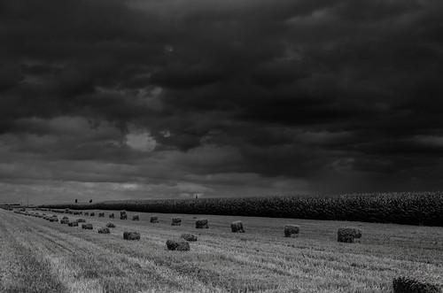 Bottes de paille sous un ciel orageux Paysage NB4