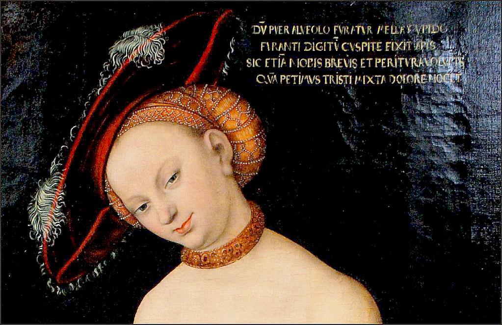 Cranach The Elder Venus And Cupid Lucas Cranach Venus Amp Cupid