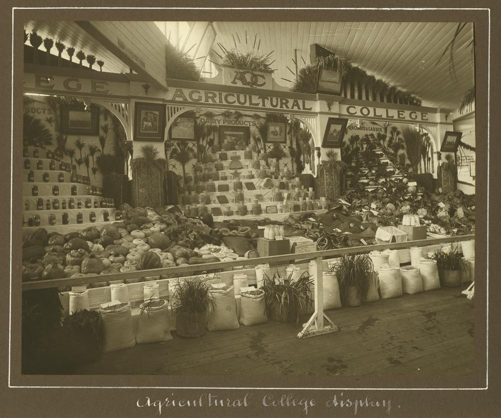 Exhibition Displays Brisbane : Queensland agricultural college display at the exhibition