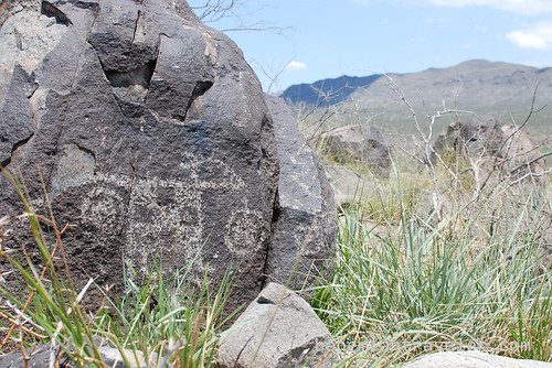 petroglyphs at three rivers Site New Mexico (9)