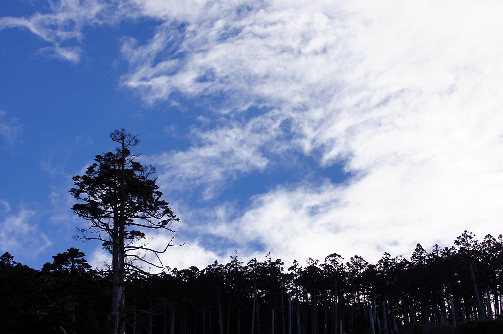 雪山主東下翠池-Day2-206
