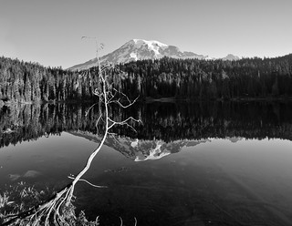Reflection Lake Vista (B&W)