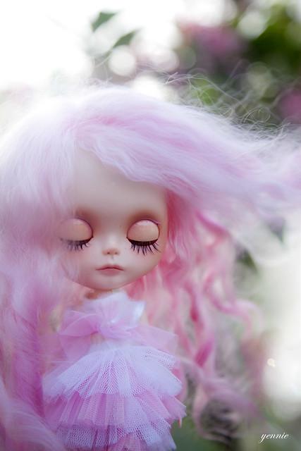 Little Pink Dream
