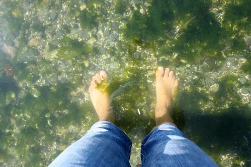 Seaweed Feet