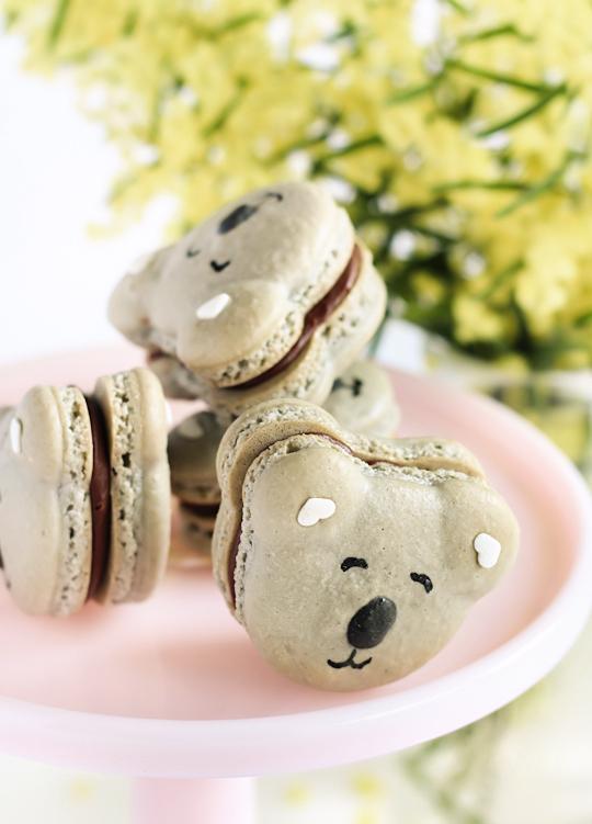 Caramel Koala Macarons