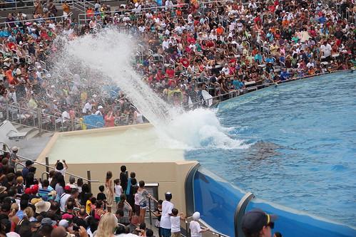 The splash zone!