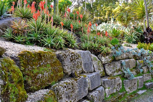 Golden Gate Park Botanical Gardens Flickr Photo Sharing