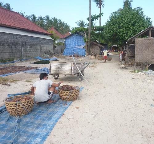 Bali-Lembongan-Jungutbatu-village (15)