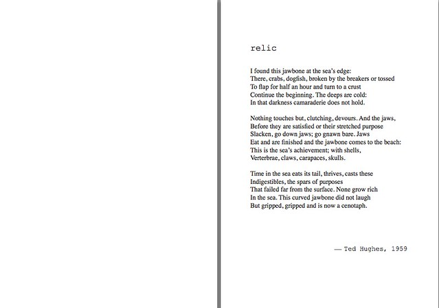 relic - ted hughes.