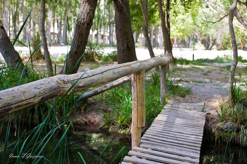 Peralta: Puente
