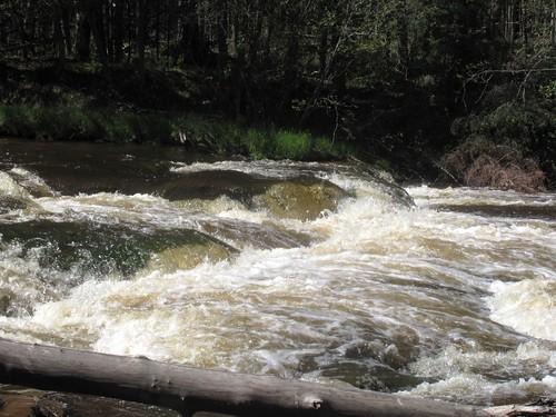 23 Upstream Ledge