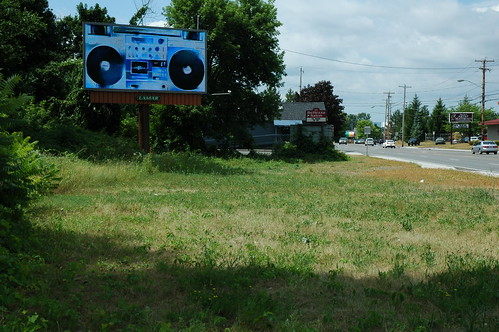 Albany Billboard Art Project 2012 - Julia Cocuzza (2)