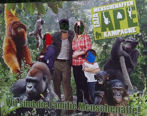 plakat comicforeground artenschutz menschenaffen affe ape zoo neunkirchen saarland germany