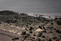 Artists on the beach at Clevedon Pier