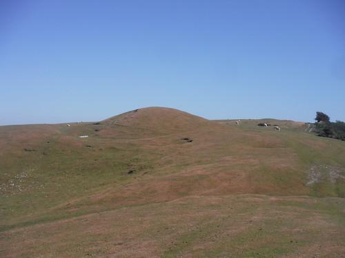 Barrow/Tumulus on Bronkham Hill